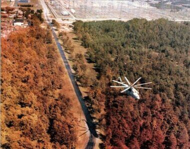 Red Forest in Chernobyl