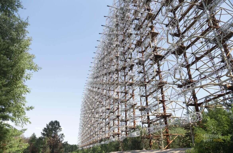 Woodpecker in Chernobyl